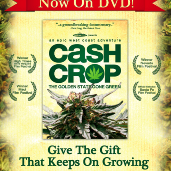 Cash Crop, Adam Ross, Sierra Films